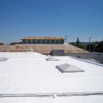 Foam roof with skylights