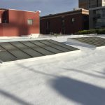 Commercial building with spray polyurethane foam roof