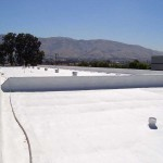 Large business building with foam roof