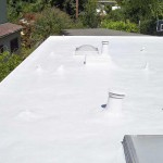flat Dura-Foam roof