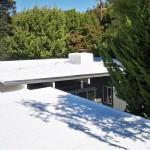Spray foam roofing near trees