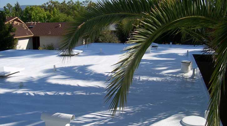 Dura-Foam solar roof with tree